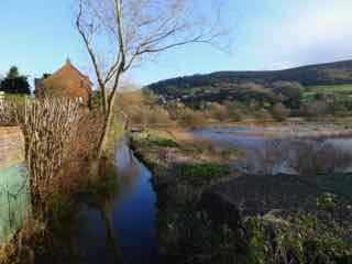 wetlands-1-1