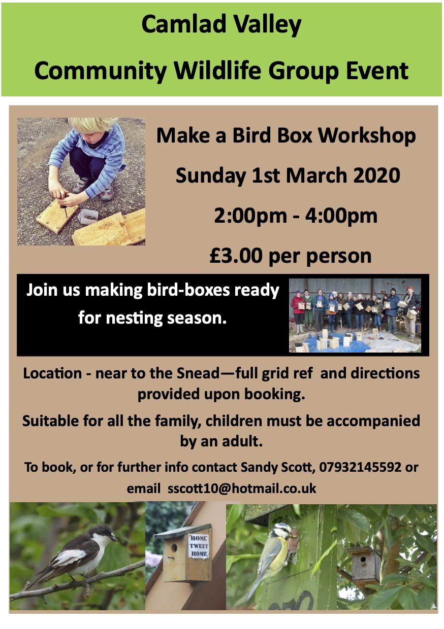 Bird-box Making Workshop 2020
