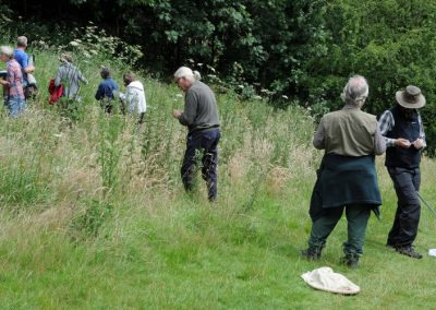 Rectory Field activity